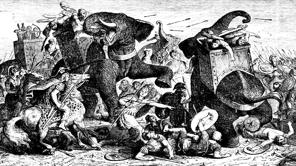 Were pigs set on fire to fight elephants?